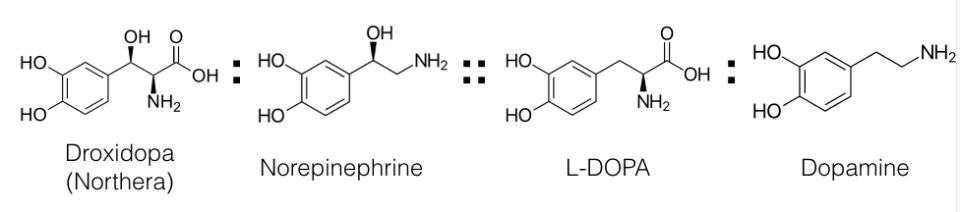 chemical analogy (droxidopa)